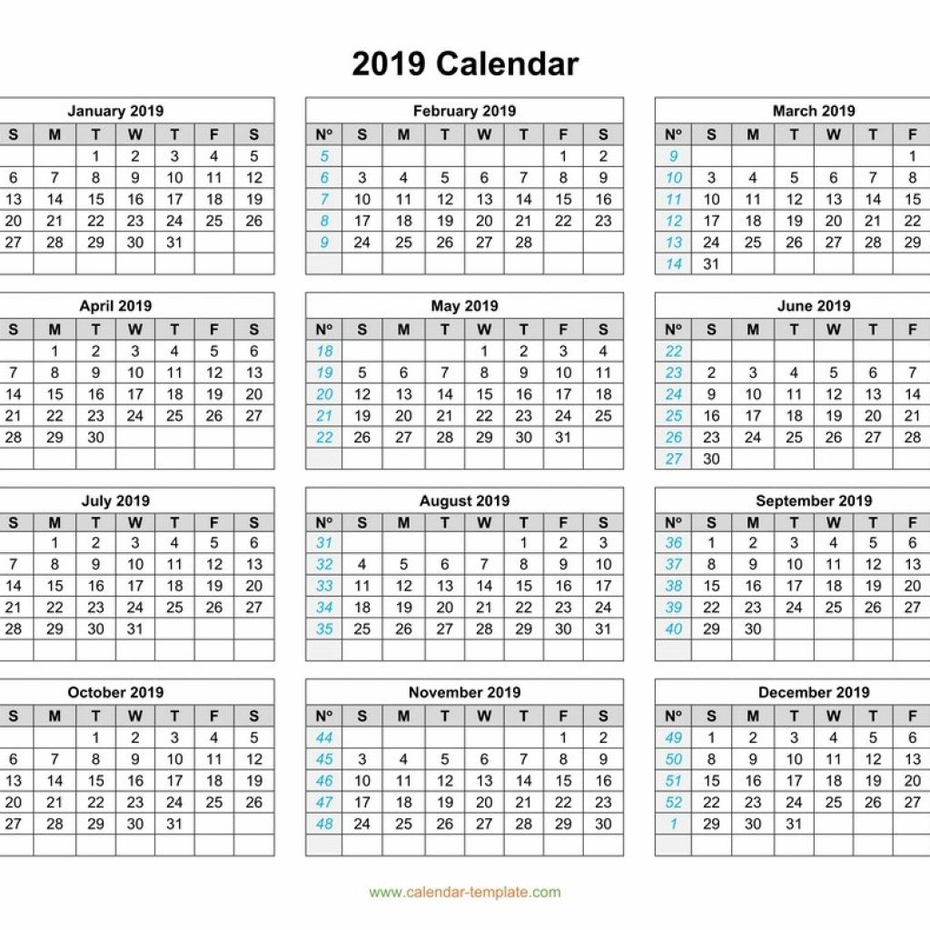 2019 Year Calendar With Weeks Template On One Page