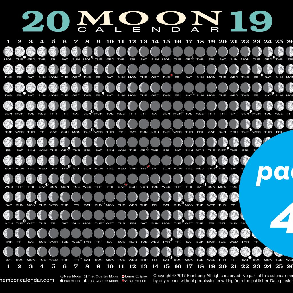 2019 Year Long Calendar With Moon Card 40 Pack Workman Publishing