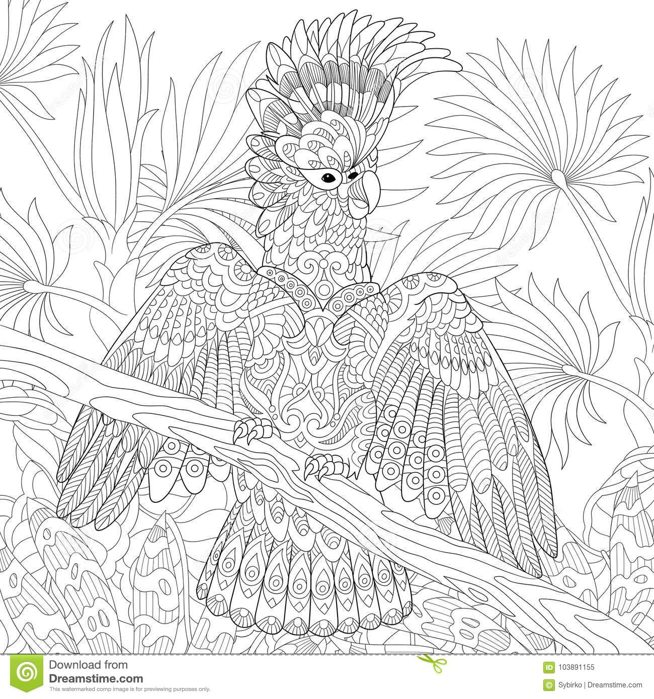 Australian Santa Coloring Page With Cockatoo Parrot In Tropical Jungle Forest Stock Vector