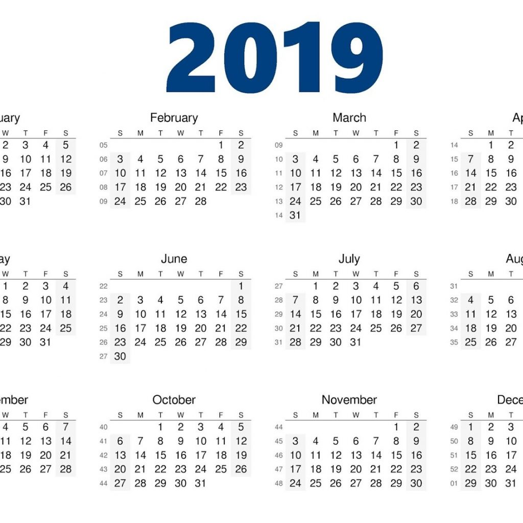 Blank Year Calendar 2019 With Printable Yearly Template August 2018