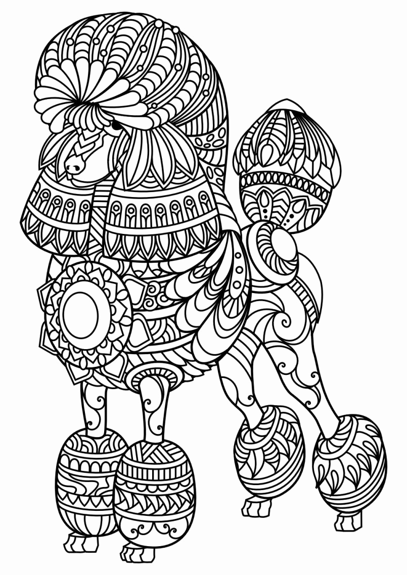 Christmas Animal Coloring Pages With Of Presents Different