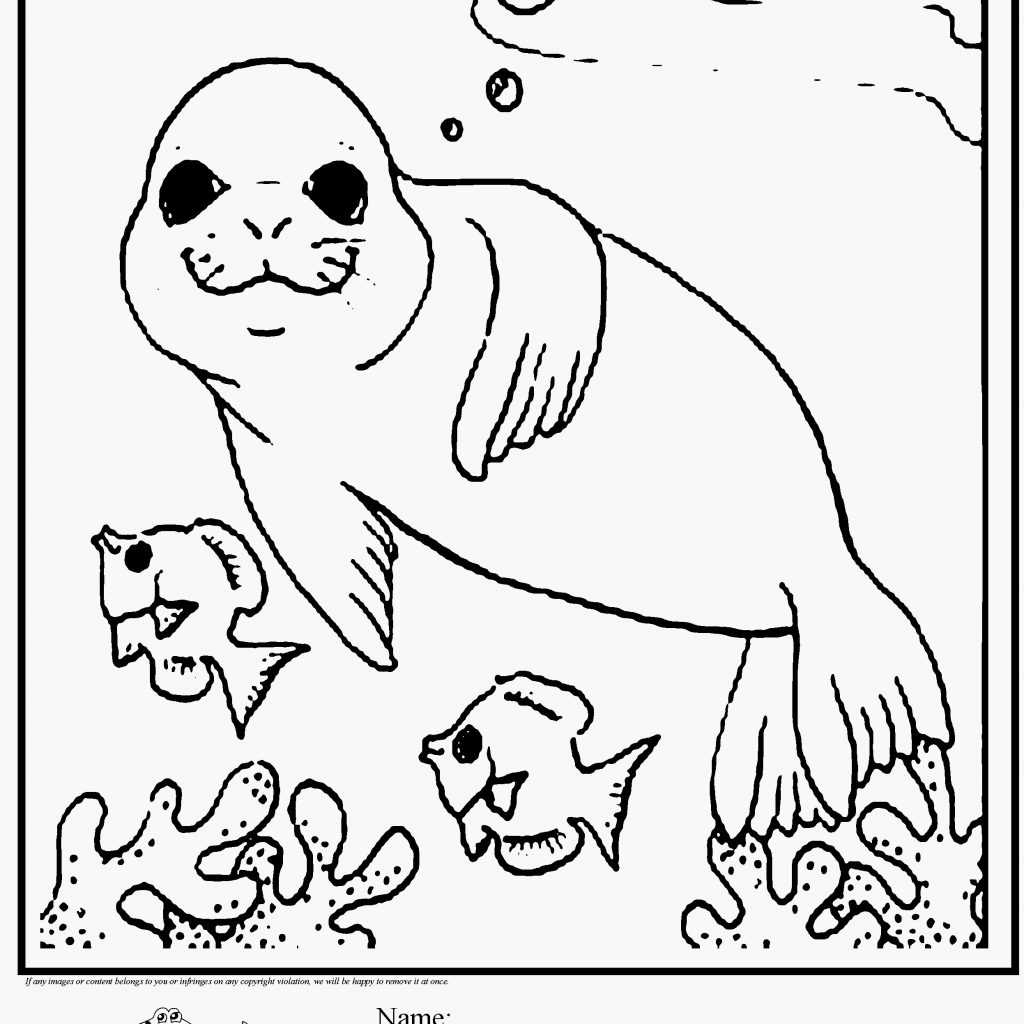Christmas Animal Coloring Pages With Platypus Animals Luxury Free