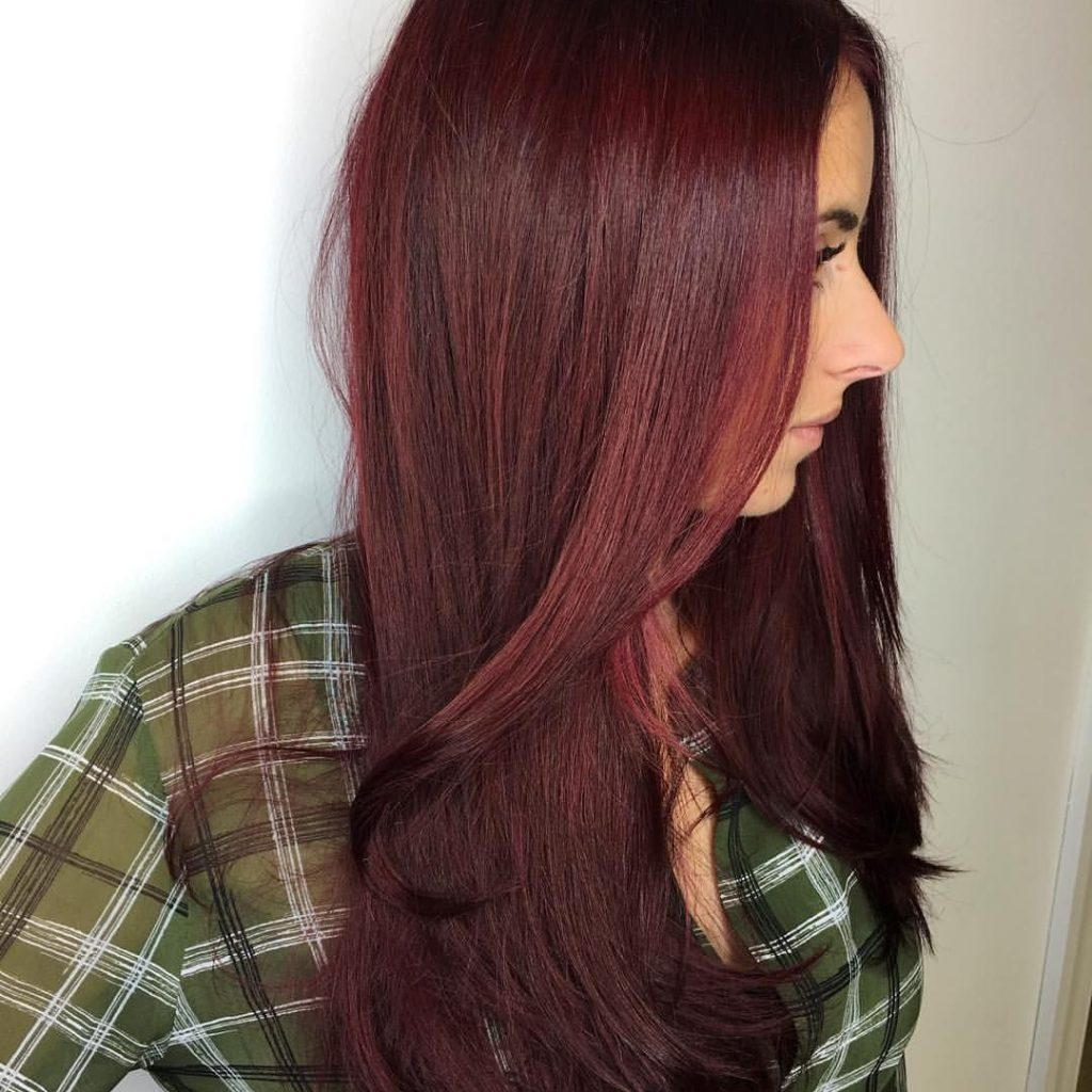Christmas Colored Hair With Cranberry Merlot Merry Everyone Hairstyles Colors