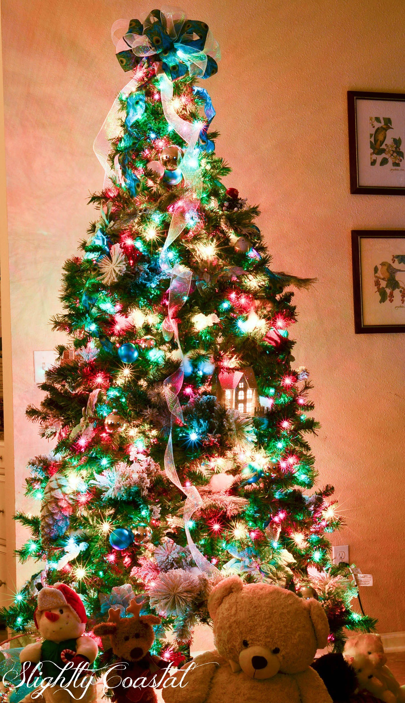 Christmas Colored Lights With Traditional Tree