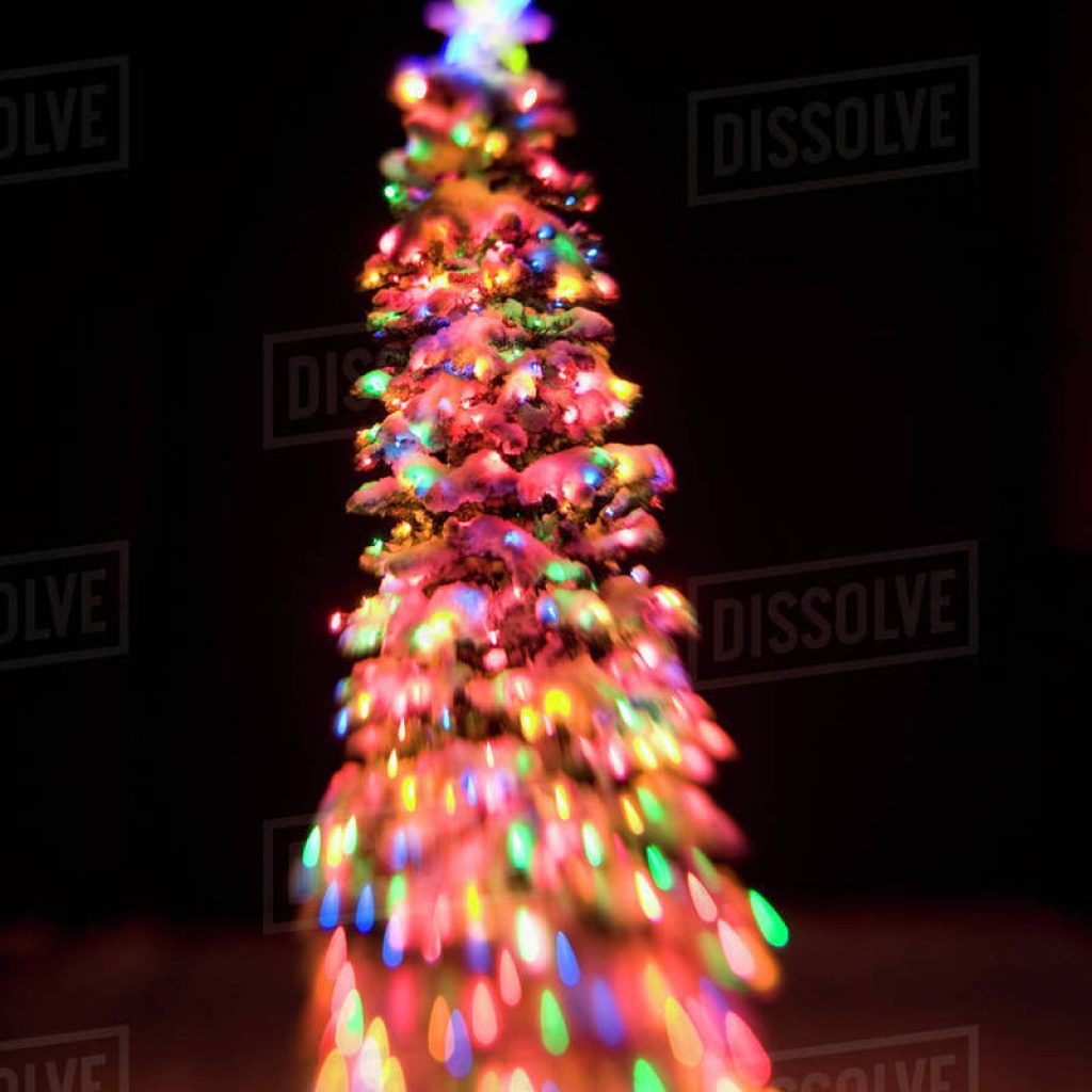 Christmas Colored Lights With Tree Lit Multi At Dusk Winter In