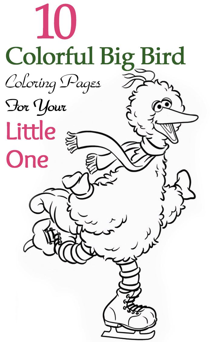 Christmas Coloring Pages Big With Top 25 Free Printable Bird Online