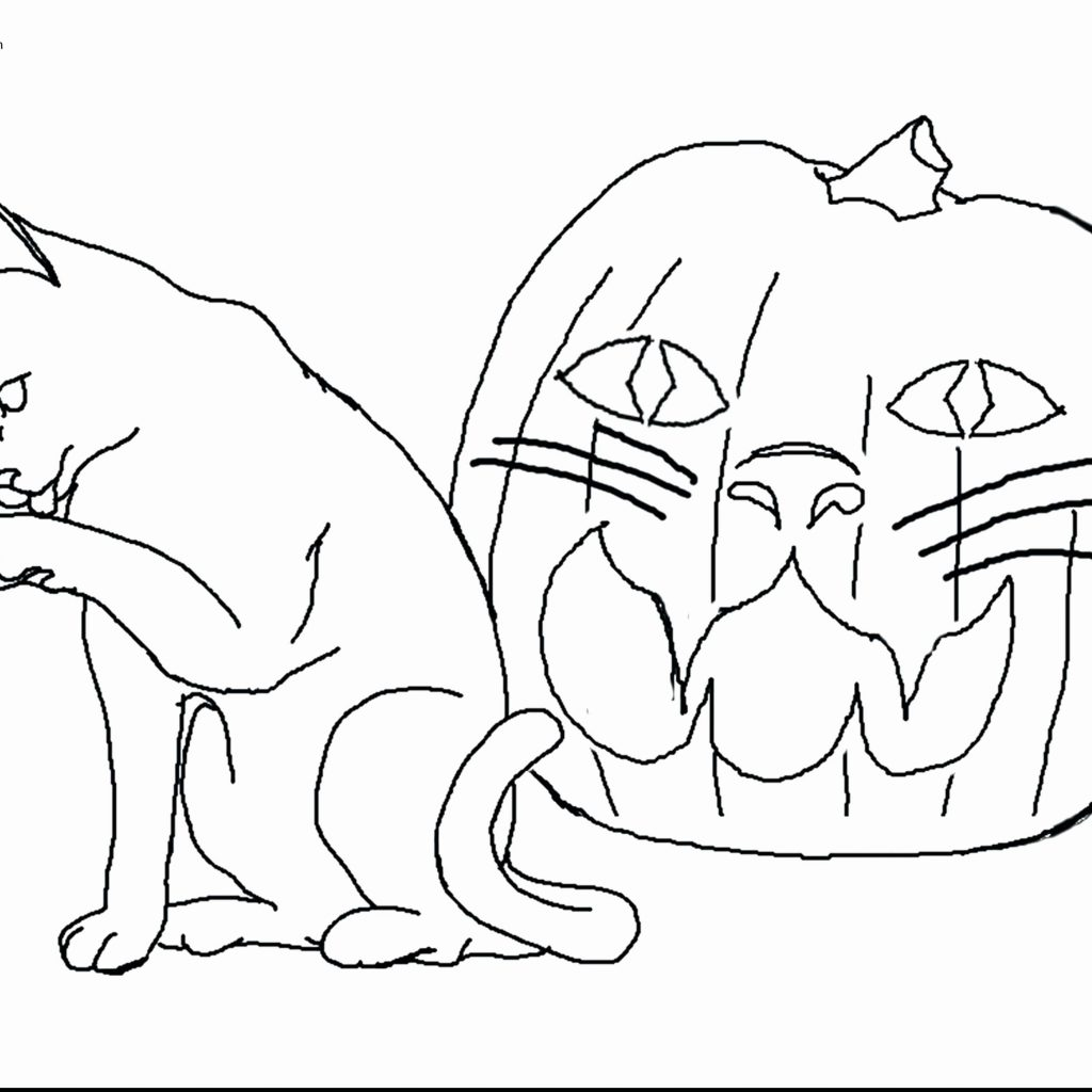 Christmas Coloring Pages Cat With Splat The Free