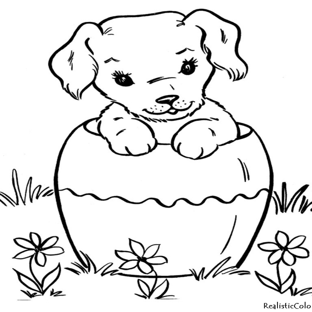 Christmas Coloring Pages Dogs With Survival Pictures Of Cats And To Color Ca 2264 Unknown