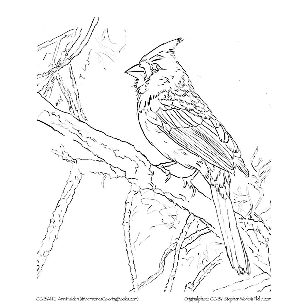Christmas Coloring Pages For Elderly With As Art Therapy Alzheimers And Other Dementias Green