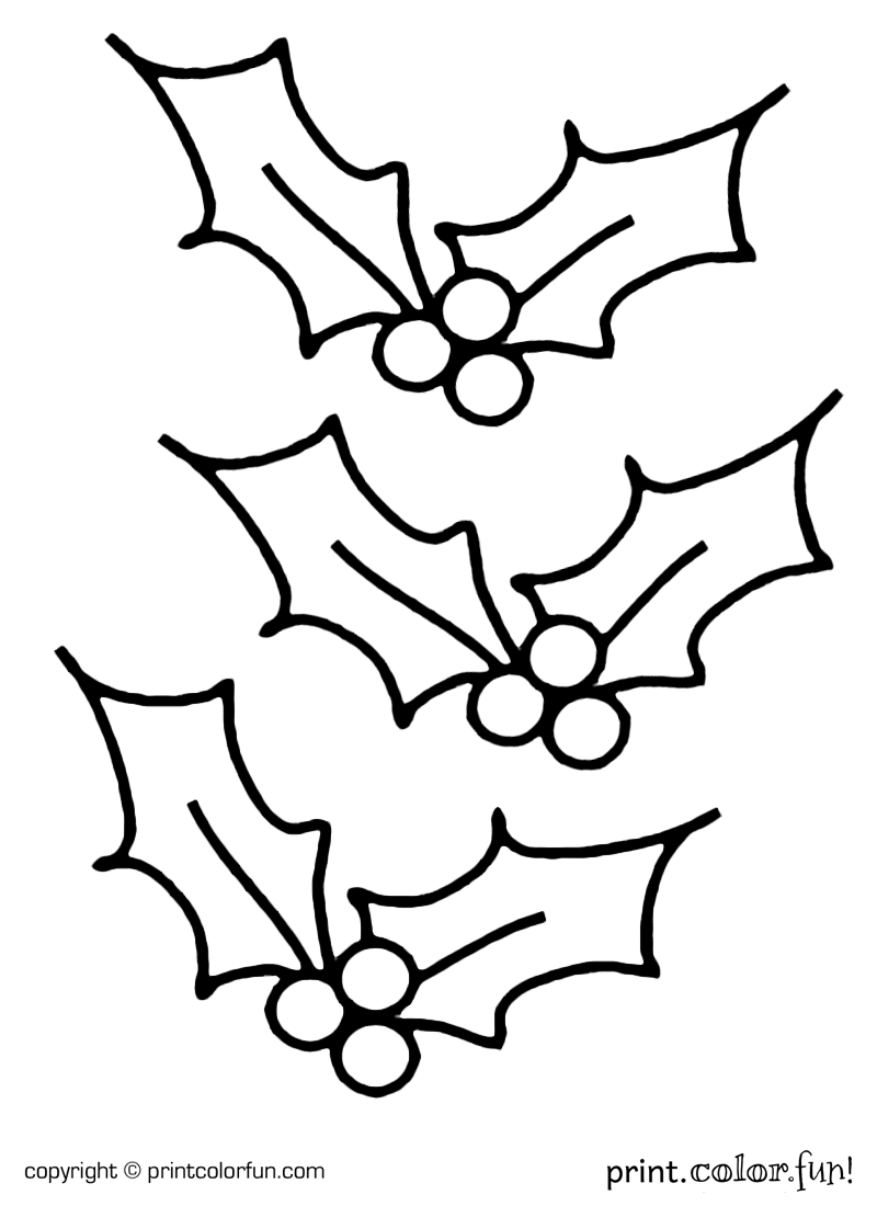 Christmas Coloring Pages Holly Leaves With Sanfranciscolife