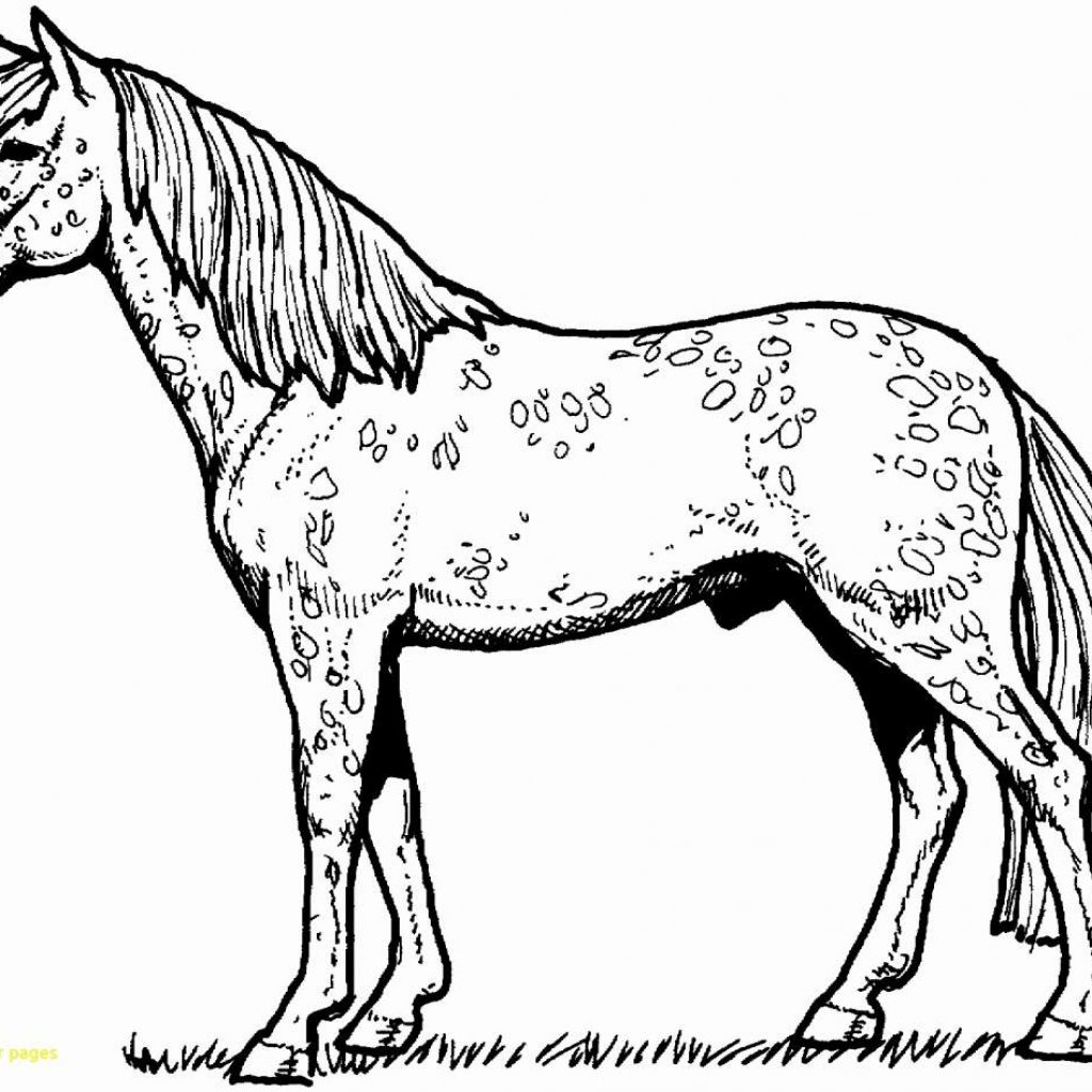 Christmas Coloring Pages Horse With Free Printable