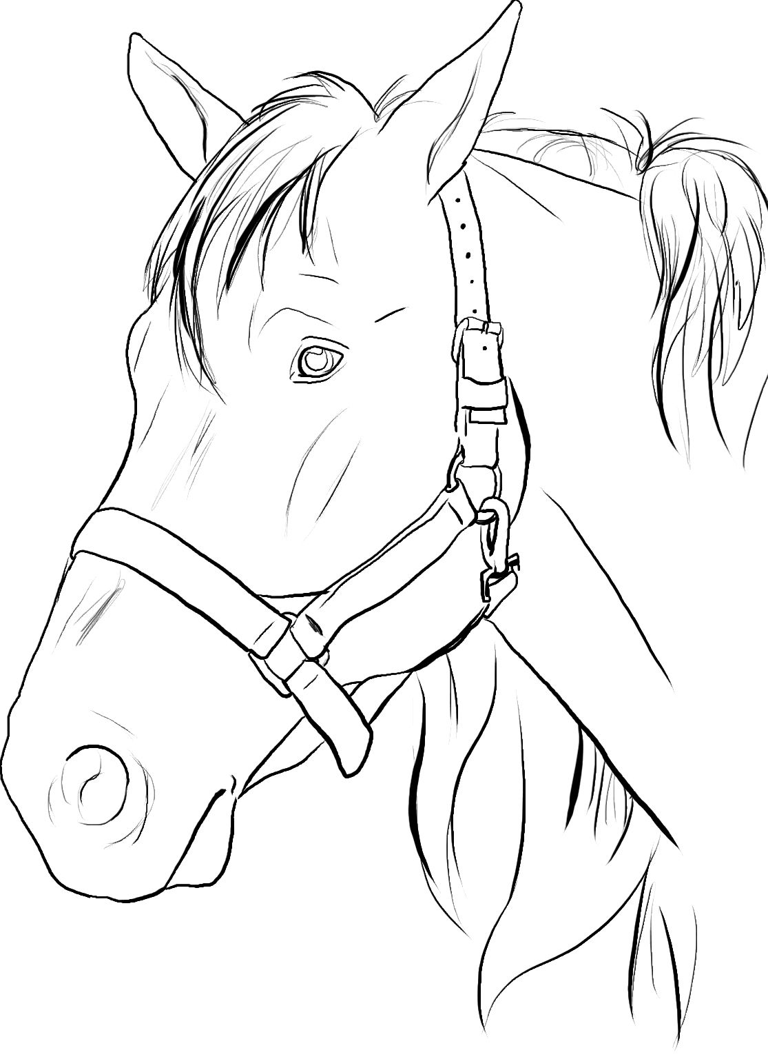 Christmas Coloring Pages Horse With Inspiring Pictures To Color And Print