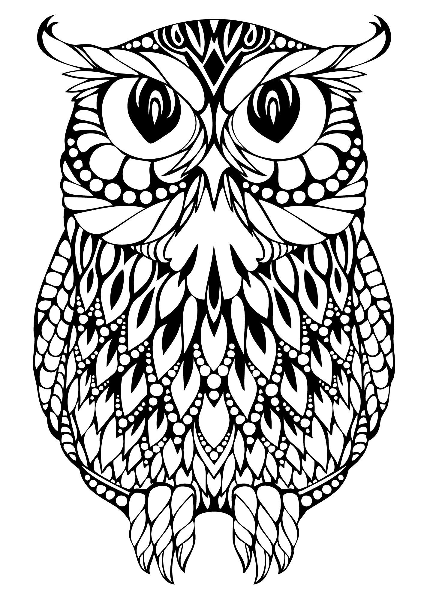 Christmas Coloring Pages Owls With Collection Of Adult Download Them And Try