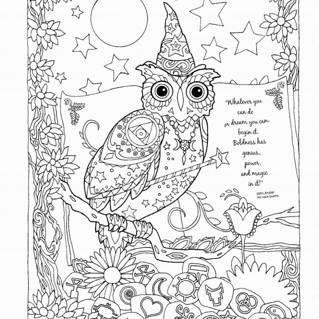 Christmas Coloring Pages Owls With Santa Claus And His Reindeer Fresh