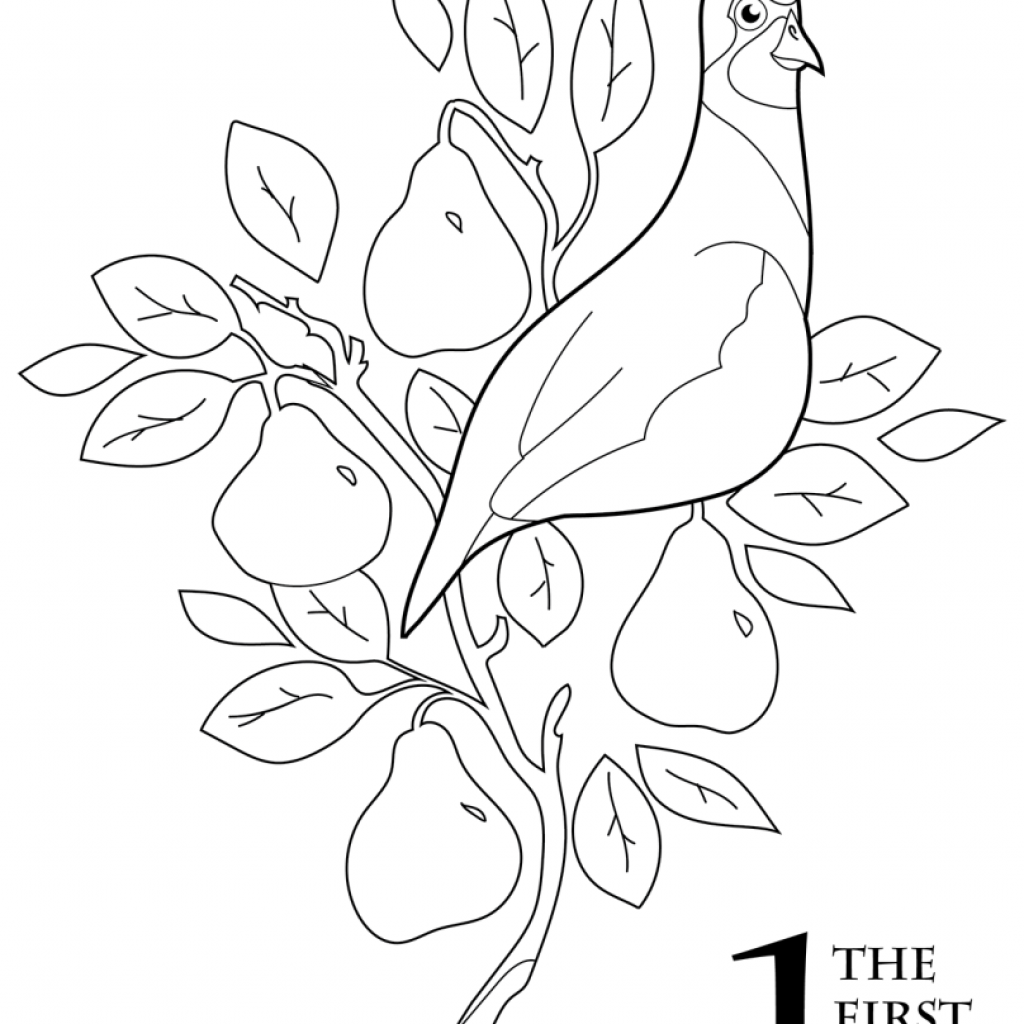 Christmas Coloring Pictures With The 12 Days Of Book Scholastic Parents