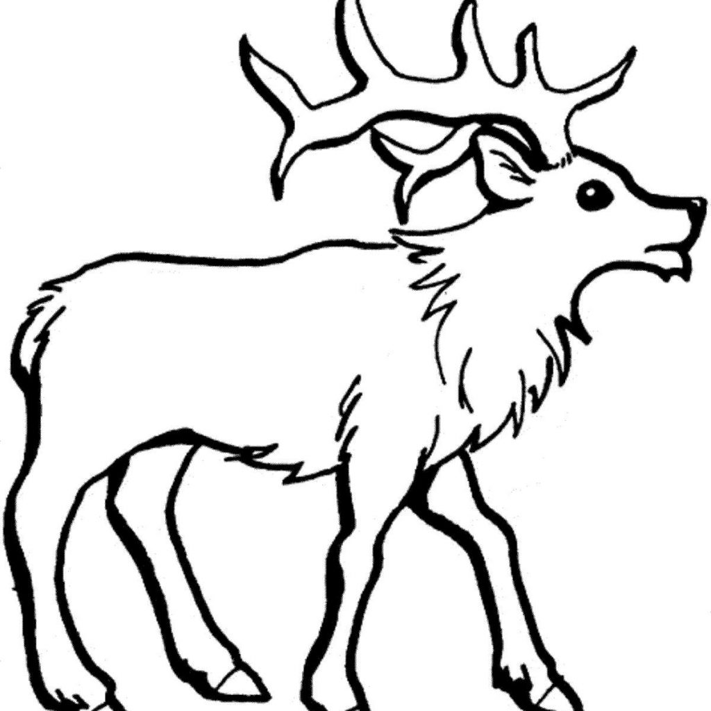 Christmas Coloring Sheets Reindeer With Rudolph Baby Pages