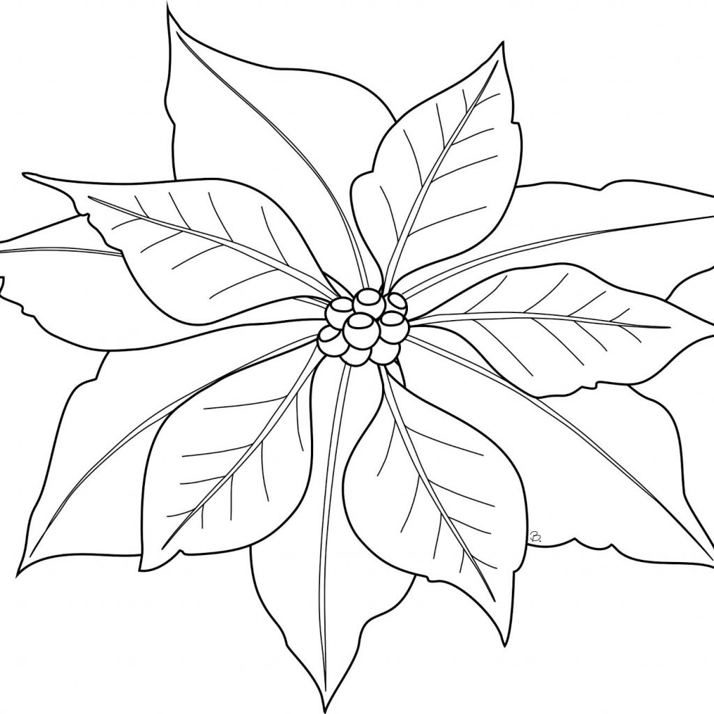 Christmas Flower Coloring Pages With Flowers