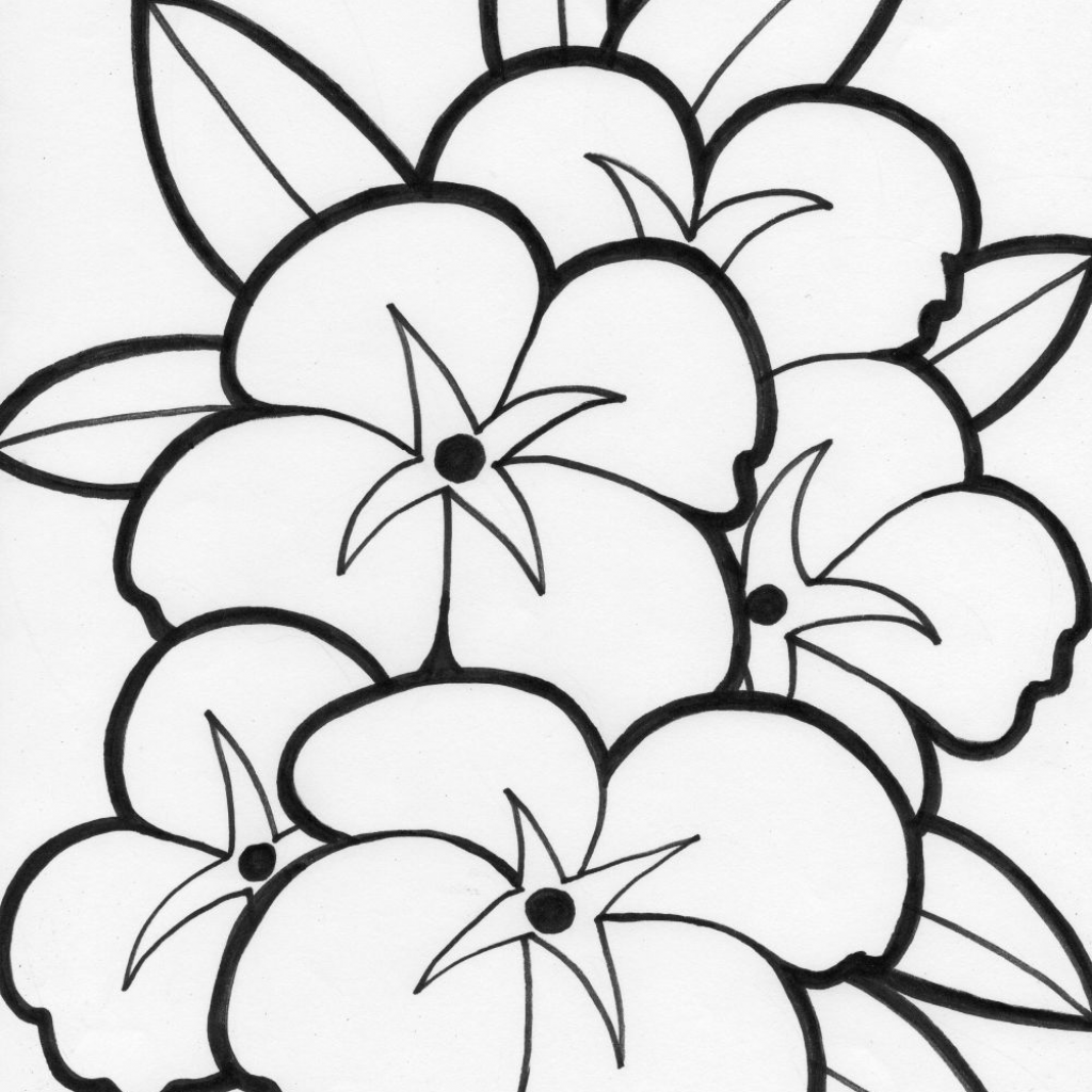Christmas Flower Coloring Pages With Summer Flowers Printable Free Large Images The