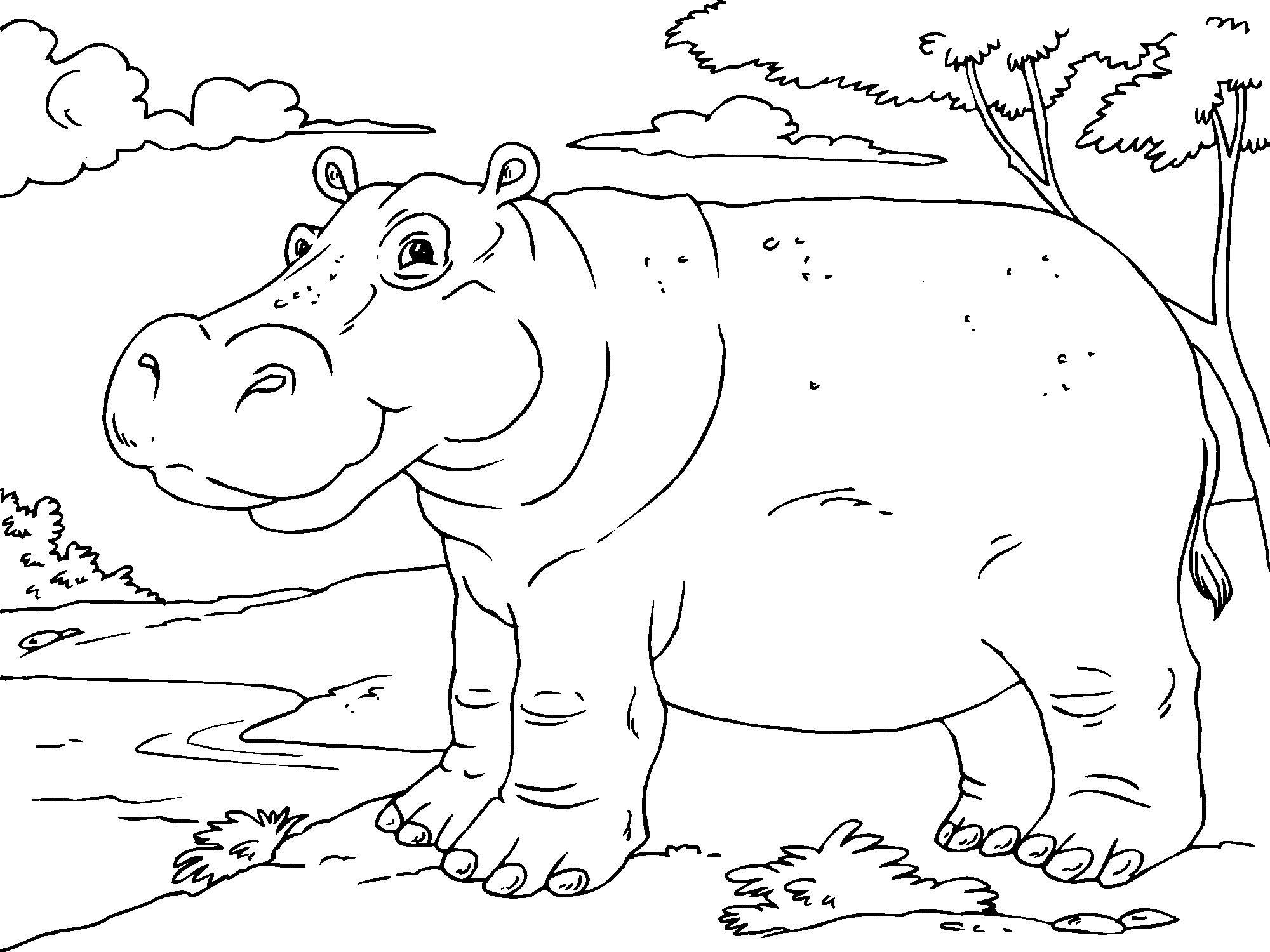 Christmas Hippo Coloring Page With Free Printable Pages For Kids