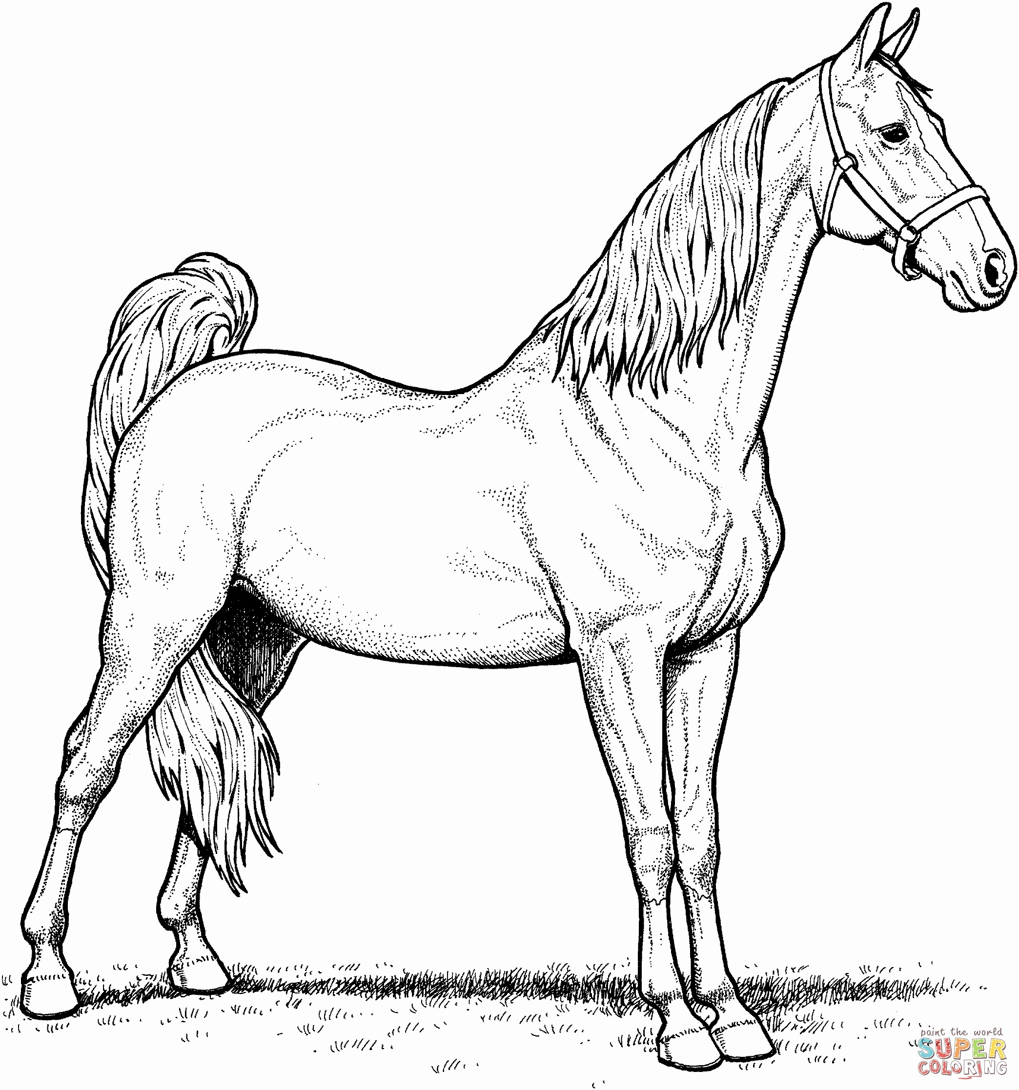 Christmas Horse Coloring Pictures With Page Of Pages