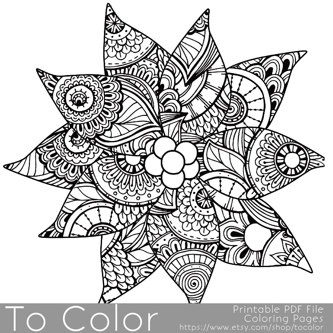 Christmas Intricate Coloring Pages With Holiday Detailed Poinsettia Page For Grown Ups