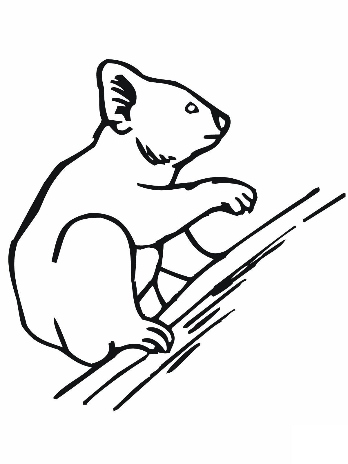 Christmas Koala Coloring Page With Free Printable Pages For Kids 3D Pinterest
