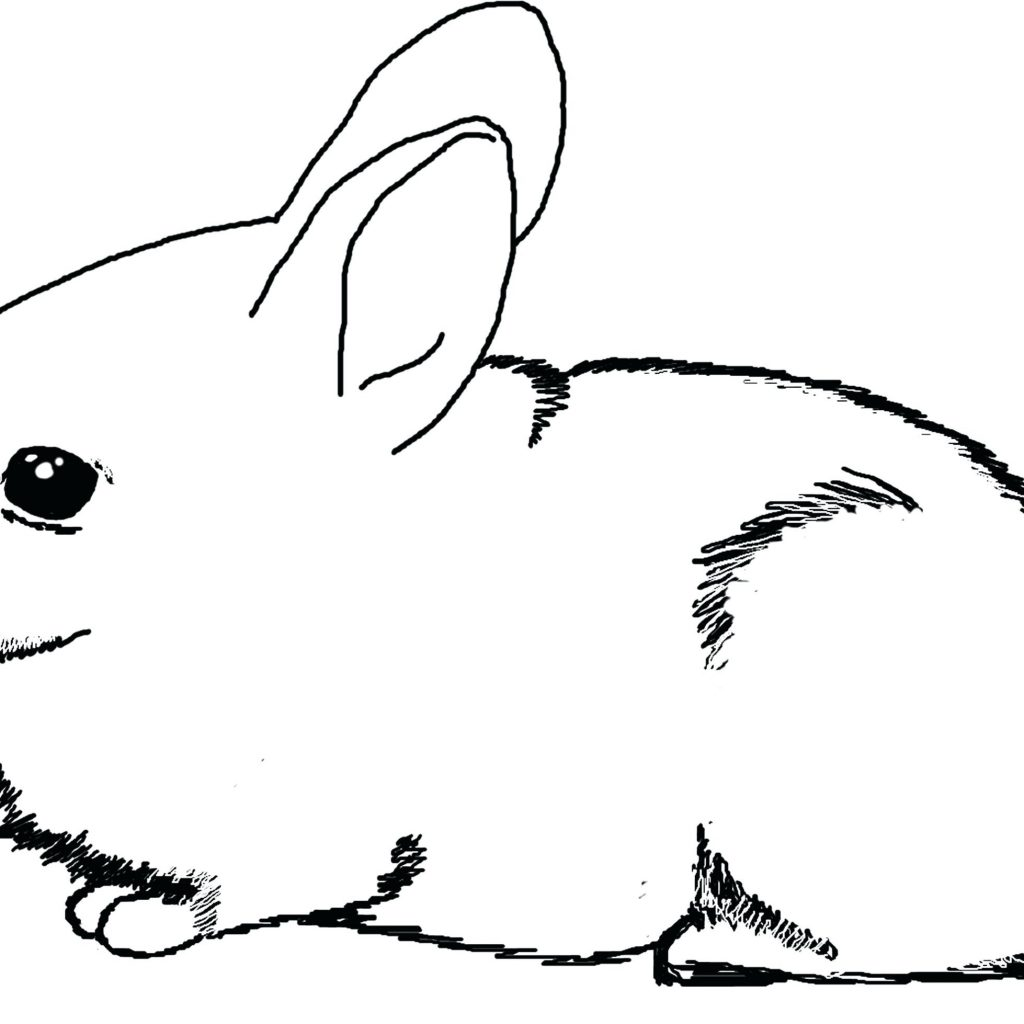Christmas Rabbit Coloring Pages With Color Unmap