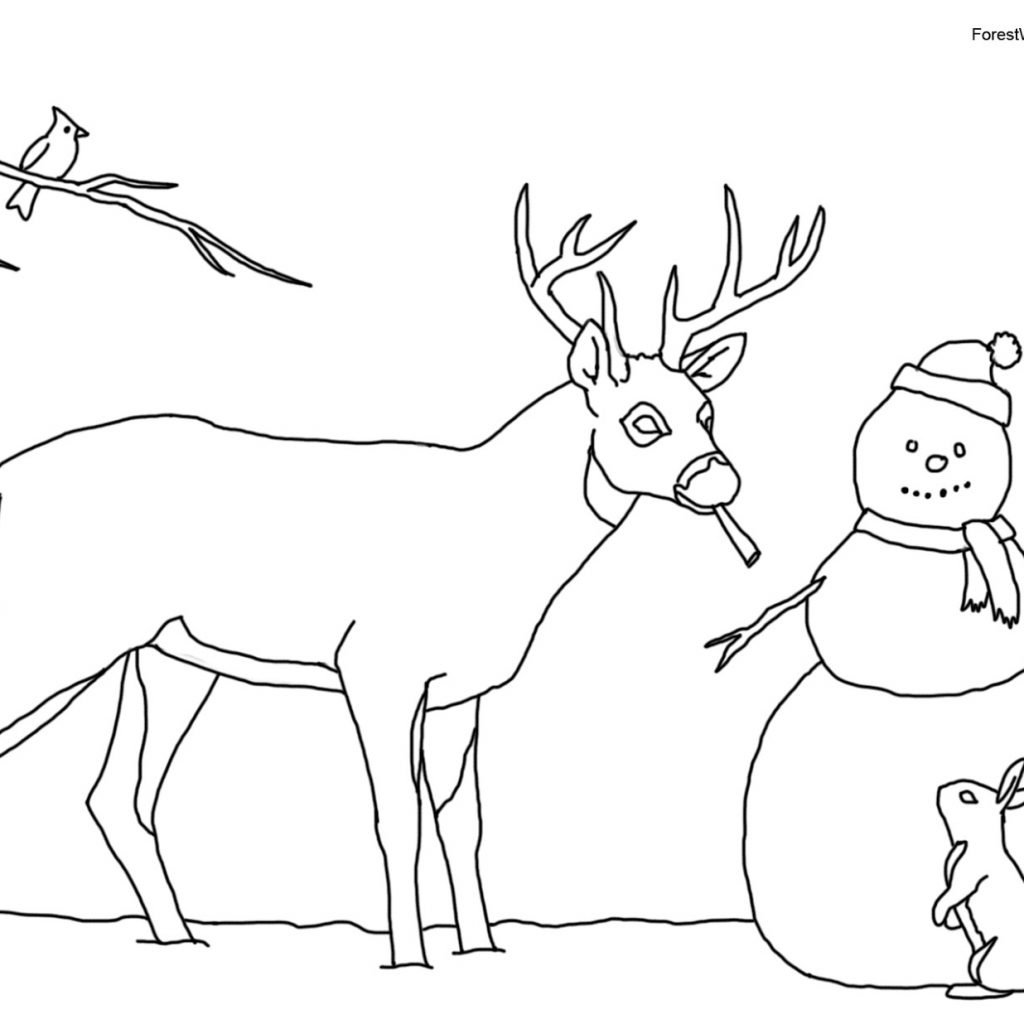 Christmas Rabbit Coloring Pages With Crista Forest S Animals Art Book Page For Kids