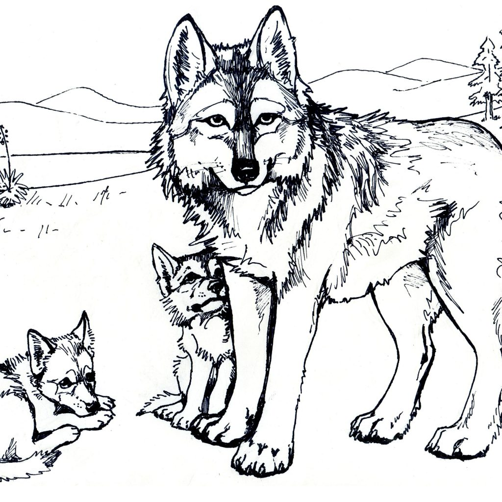 Christmas Wolf Coloring Pages With Download And Print Printable Free For Adults