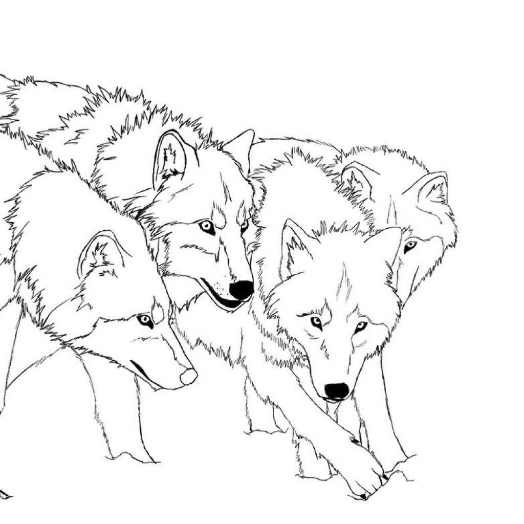 Christmas Wolf Coloring Pages With Free Printable For Kids