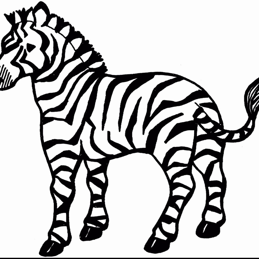 Christmas Zebra Coloring Pages With Marty The Fresh Amazing Book And Cute Baby