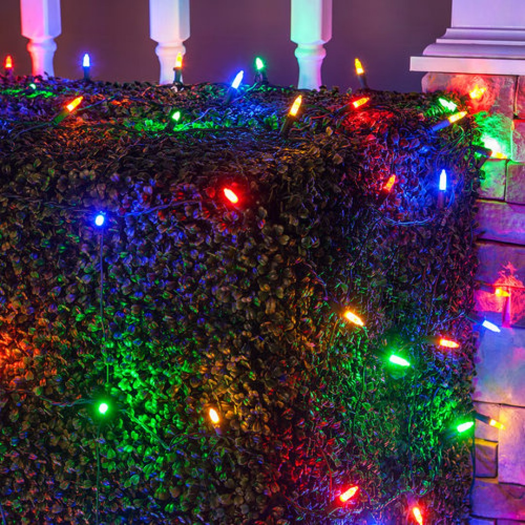 Colored Christmas Net Lights With CLU72494 4 Ft X 6 Light Set 100 Multi Color LED