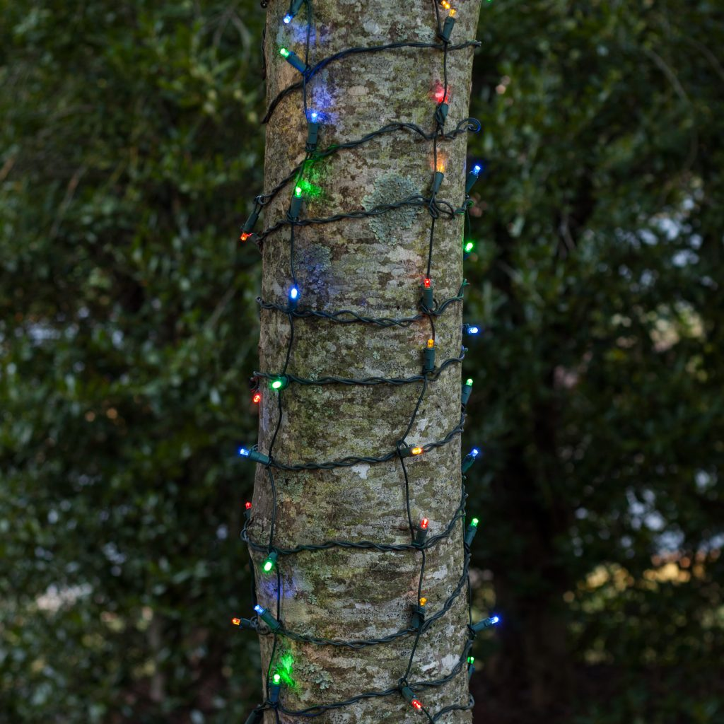 Colored Christmas Net Lights With LED Multi 5MM Conical 100L 2 X6 Trunk Wrap