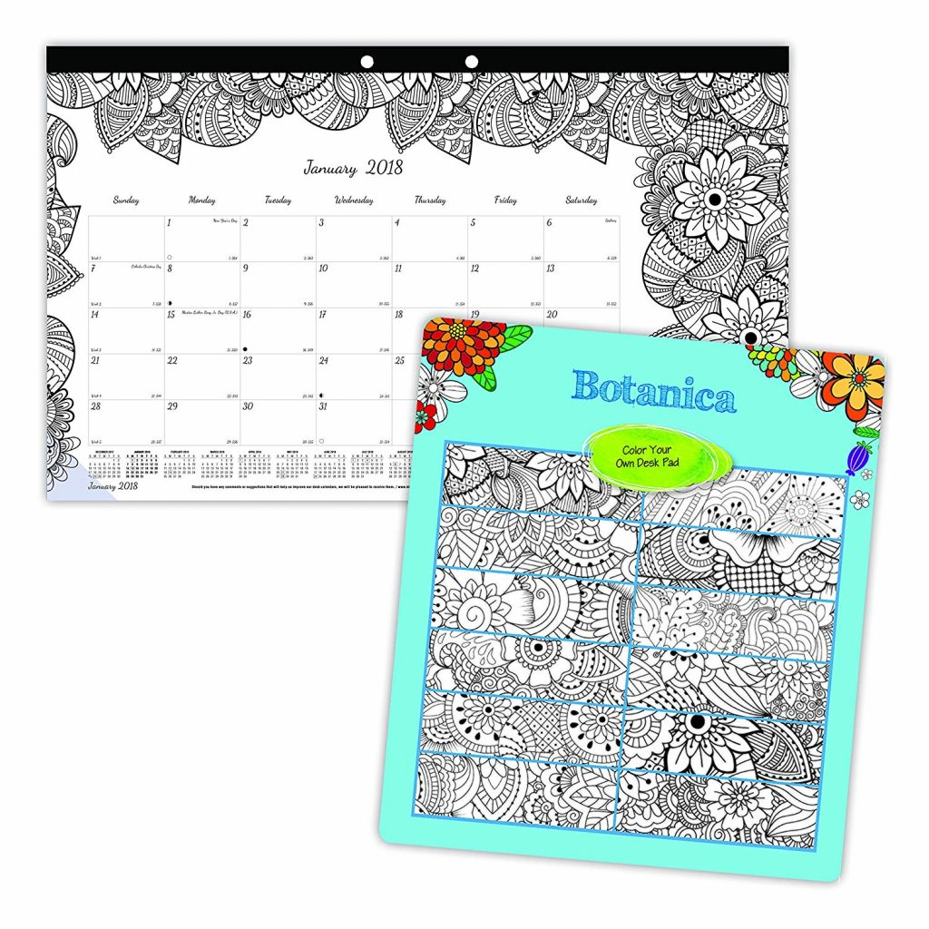 Coloring Desk Calendar 2019 With Amazon Com Blueline DoodlePlan Monthly Pad