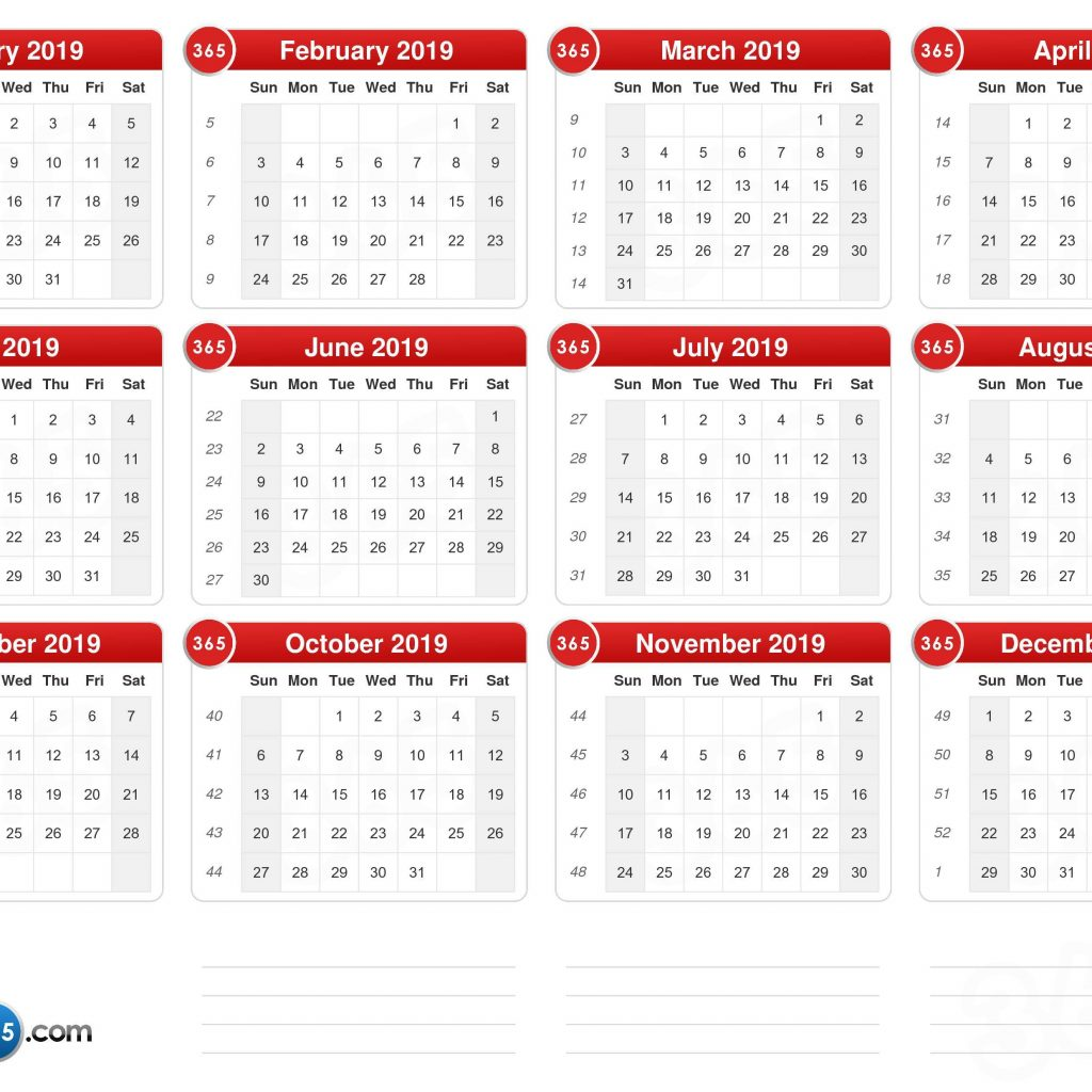 Fiscal Year 2019 Calendar Usa With