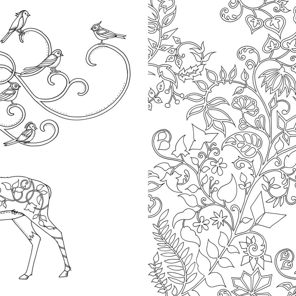 Johanna Basford Christmas Coloring Pages With Enchanted Forest An Inky Quest Book