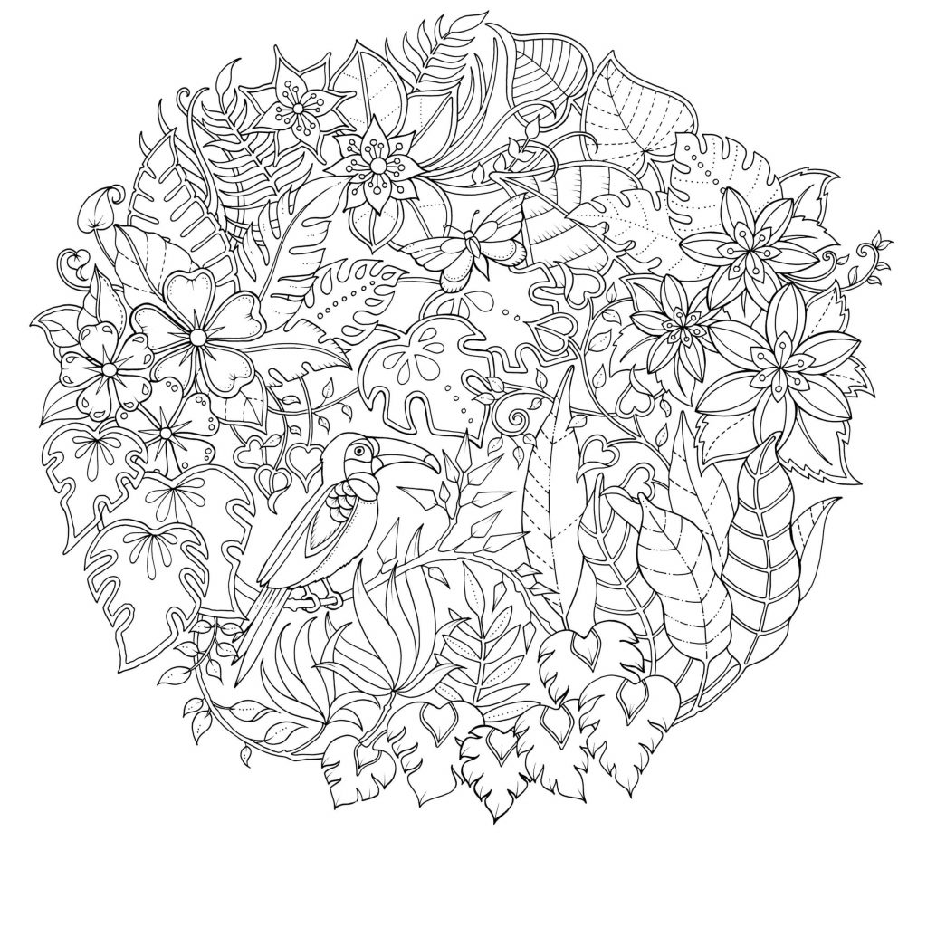 Johanna Basford Christmas Coloring Pages With Image Result For Pinterest