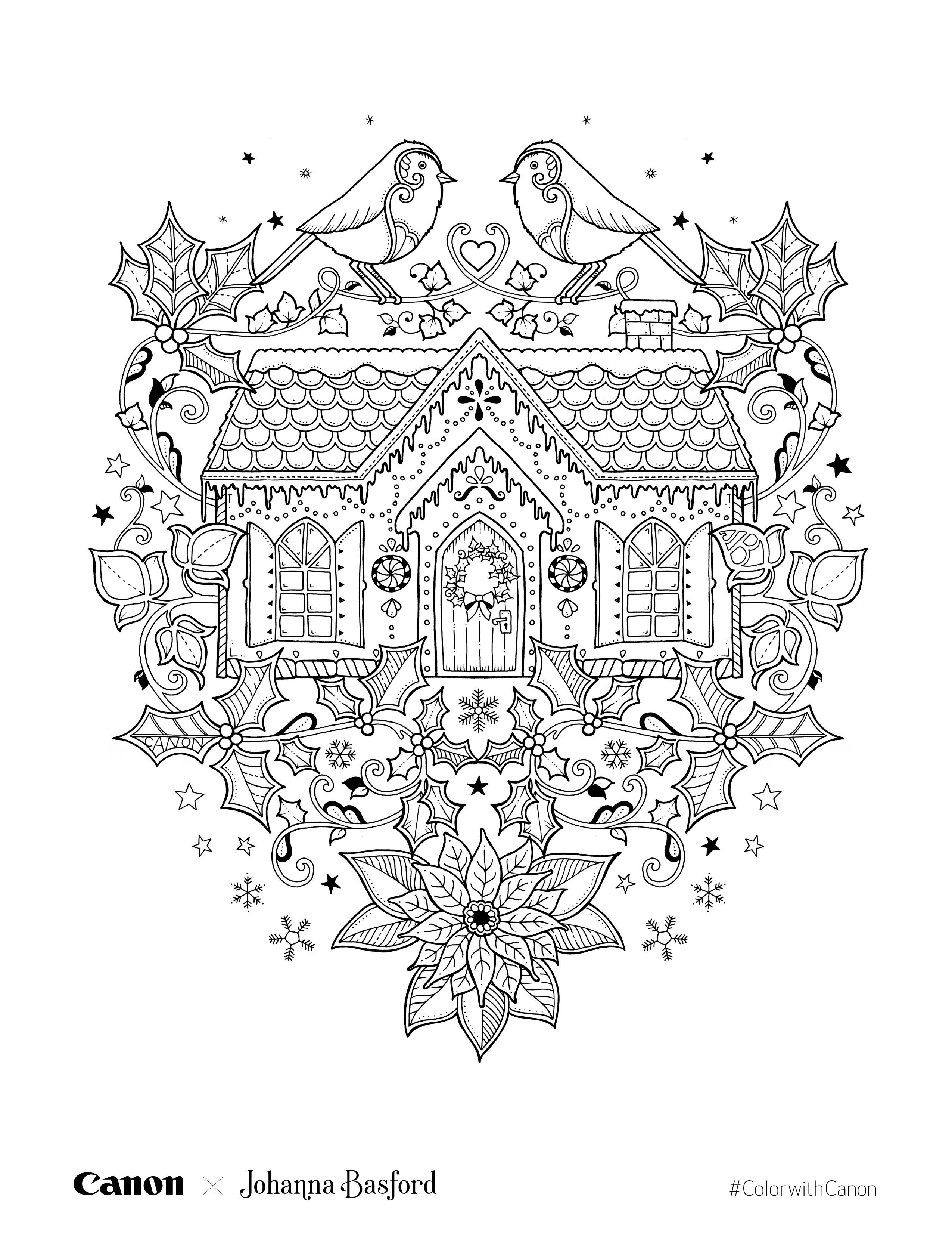 Johanna Basford Christmas Coloring Pages With Pin By Zoe Teear On Colouring Pinterest