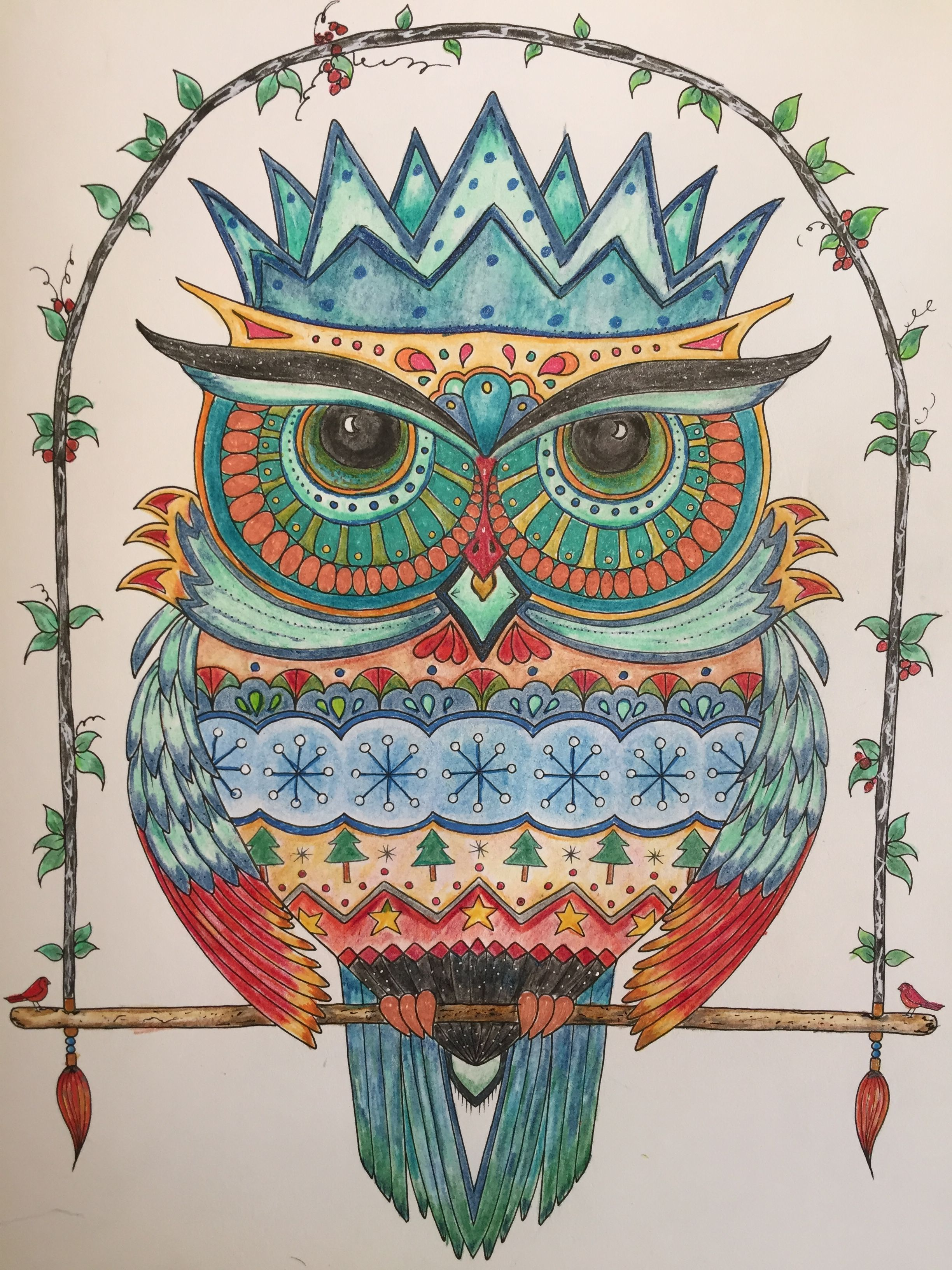 Johanna S Christmas Coloring Book With My Owl From