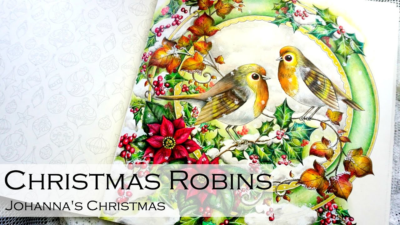 Johanna S Christmas Coloring Book With Robins Adult By
