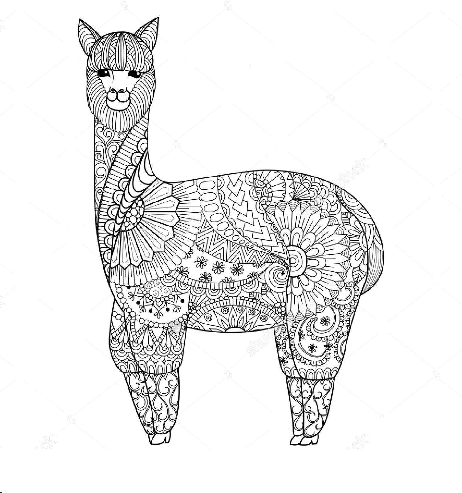 Llama Christmas Coloring Pages With Image Result For Page Inspired By Chile Pinterest