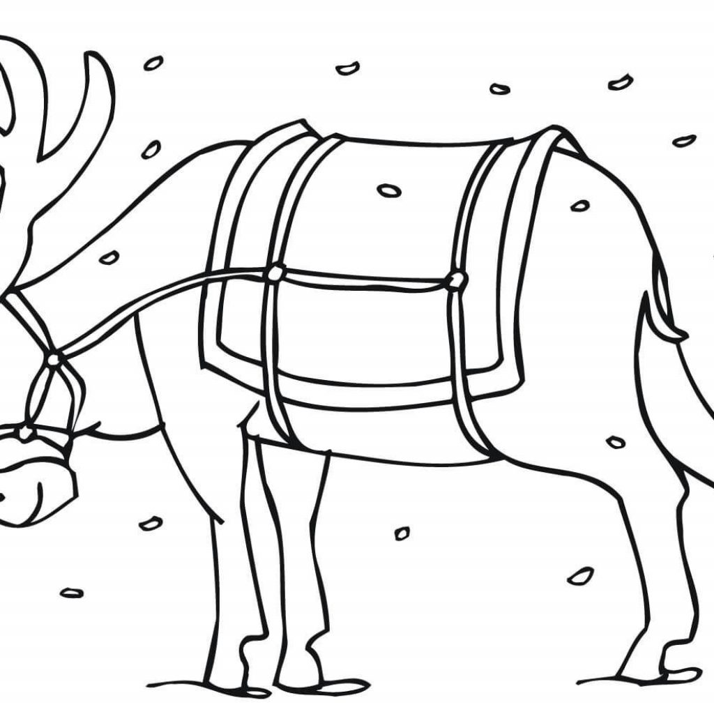 Printable Christmas Coloring Pages Reindeer With Santas Sheets Page For Kids