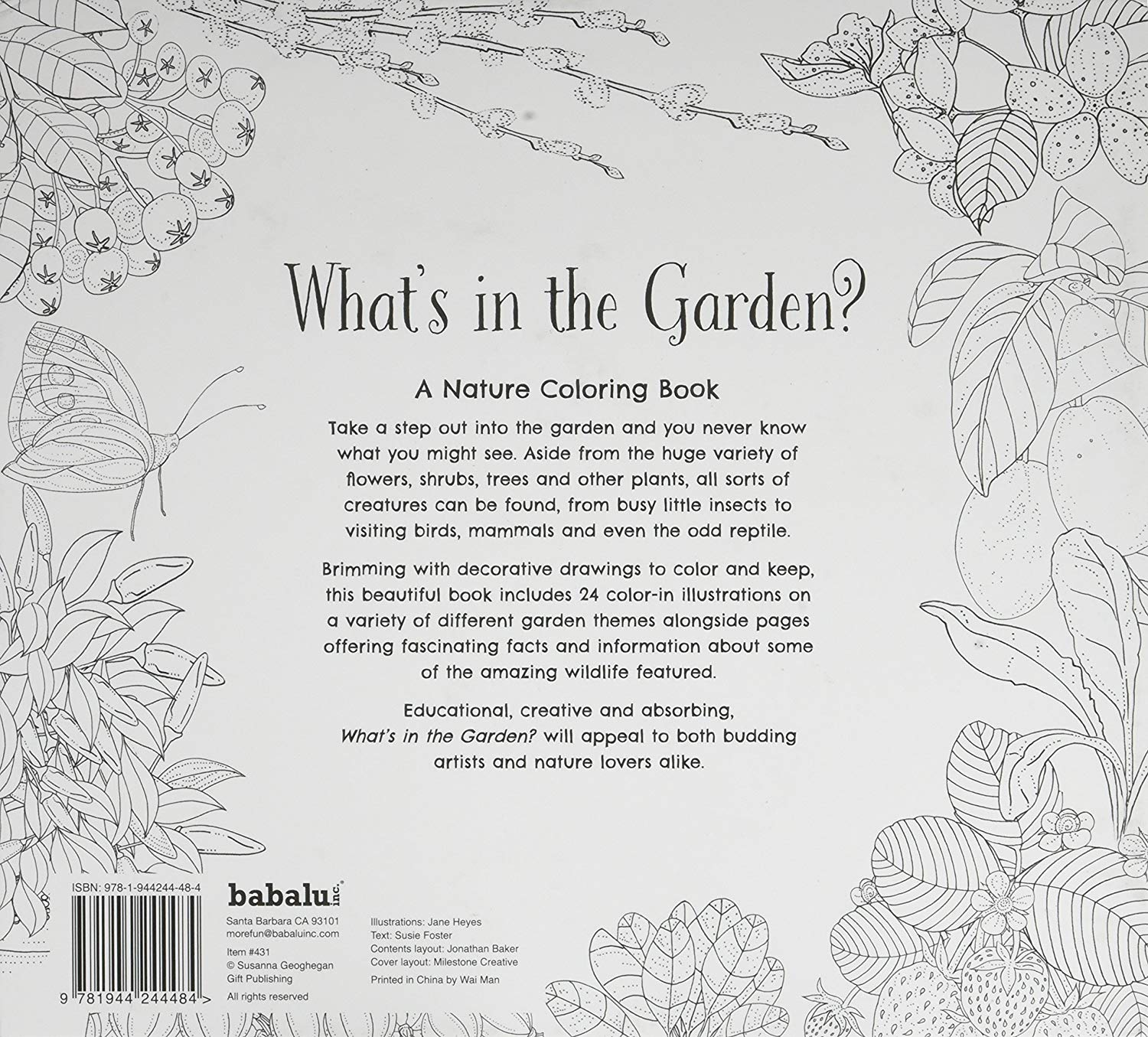 Santa Barbara Coloring Book With Amazon Com What S In The Garden Toys Games