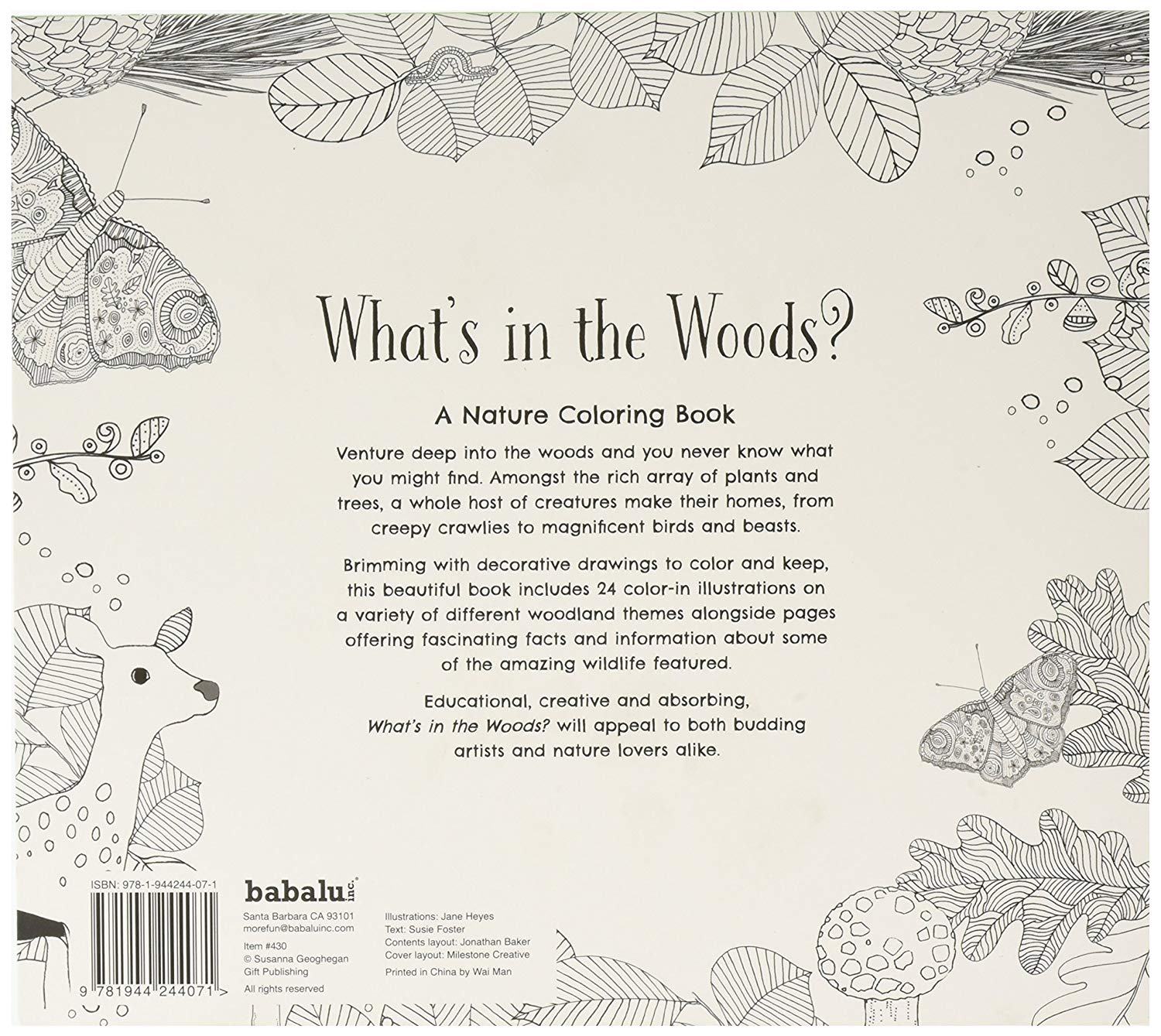 Santa Barbara Coloring Book With Amazon Com What S In The Woods Toys Games