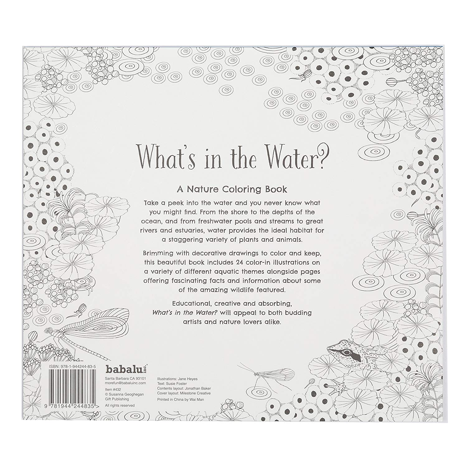 Santa Barbara Coloring Book With Amazon Com Whats In The Water Kids