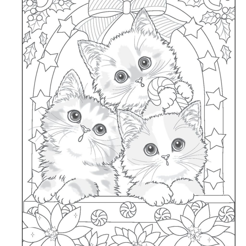 Santa Coloring Book With S Furry Helpers Colouring Books Amazon De