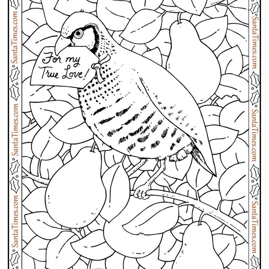 Santa Tree Coloring Page With Partridge In A Pear