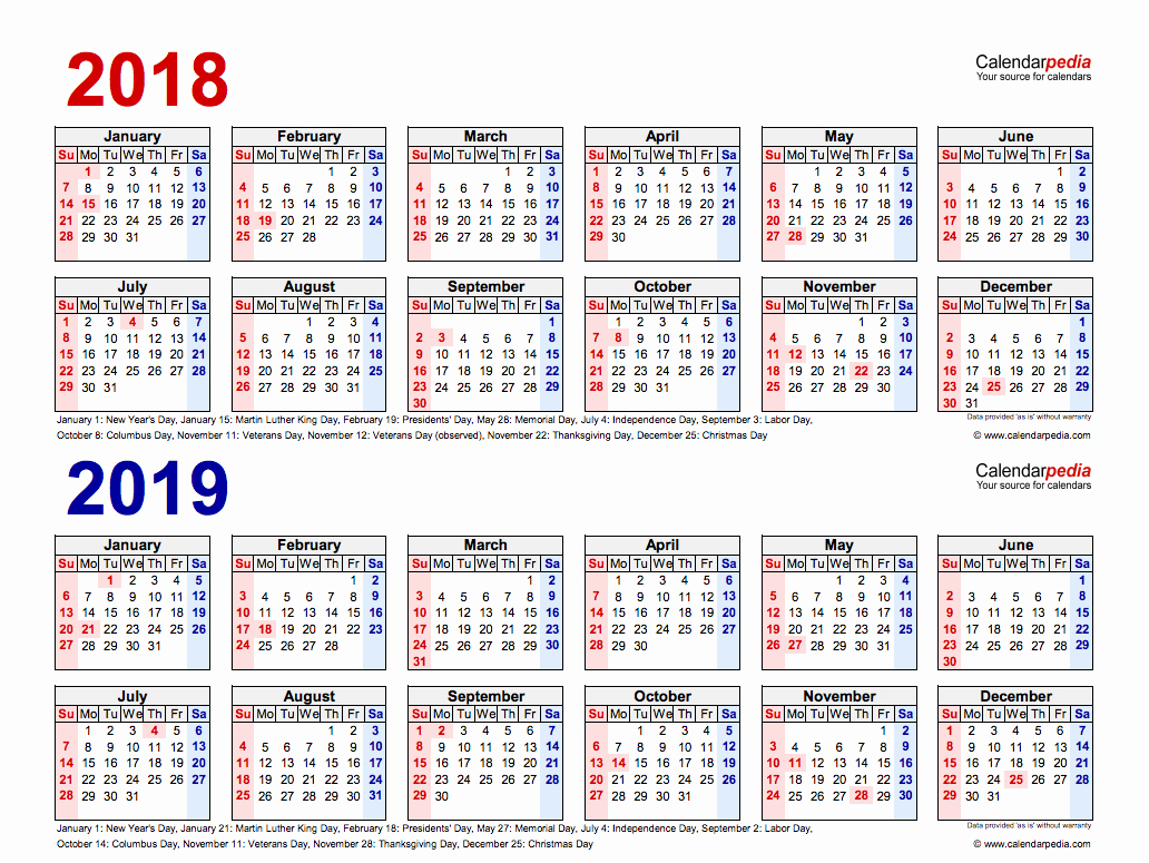 image about Printable Year Calendar referred to as 2 Yr Calendar 2019 And 2020 With Every year Absolutely free Printable