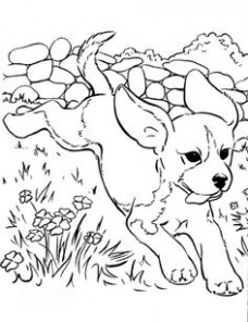 19 best Coloring book dogs images on Pinterest in 19 | Coloring ...