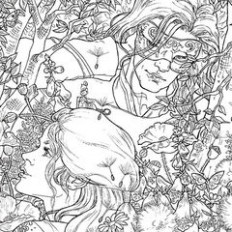 A Court of Thorns and Roses Coloring Book | A Court of Thorns and ..